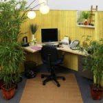 زراعة المكتب